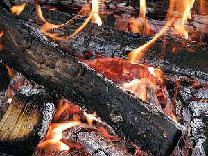 wood fire with burning embers and coals